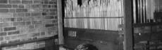 Kapernaum fotoalbum 047